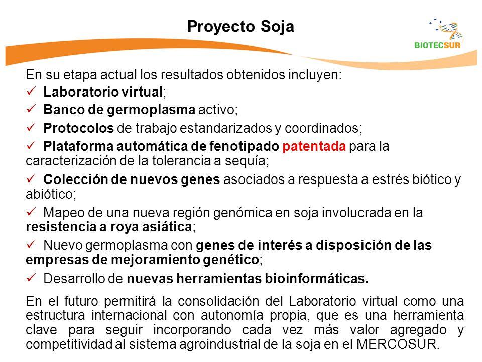 Proyecto Soja En su etapa actual los resultados obtenidos incluyen: