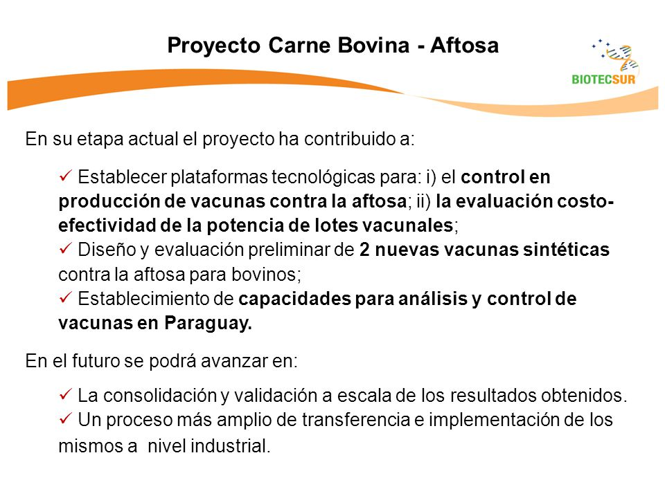 Proyecto Carne Bovina - Aftosa