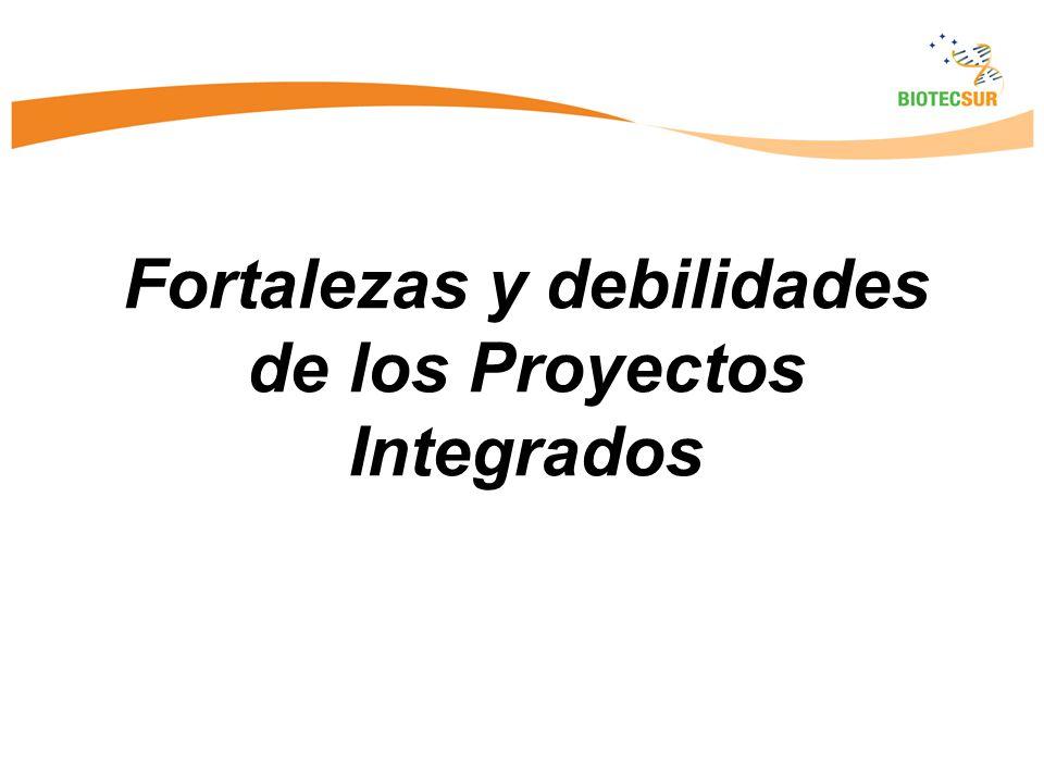 Fortalezas y debilidades de los Proyectos Integrados