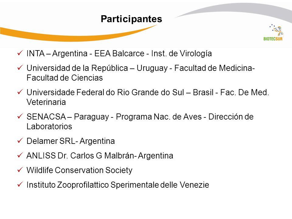 Participantes INTA – Argentina - EEA Balcarce - Inst. de Virología