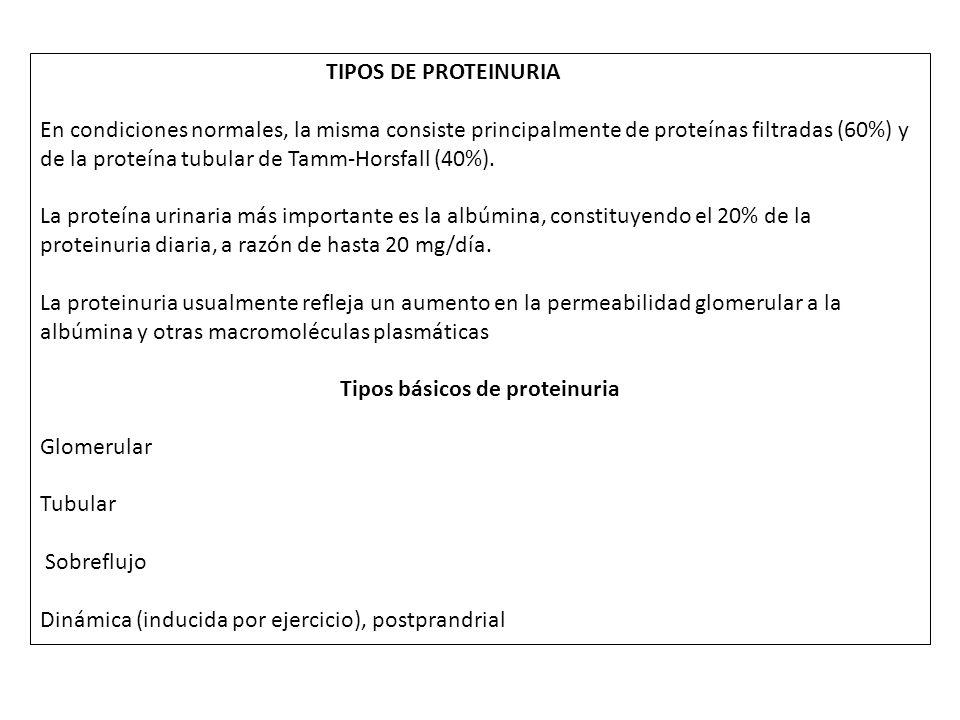 Tipos básicos de proteinuria