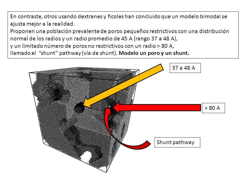 En contraste, otros usando dextranes y ficoles han concluido que un modelo bimodal se ajusta mejor a la realidad.