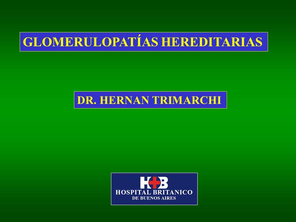GLOMERULOPATÍAS HEREDITARIAS