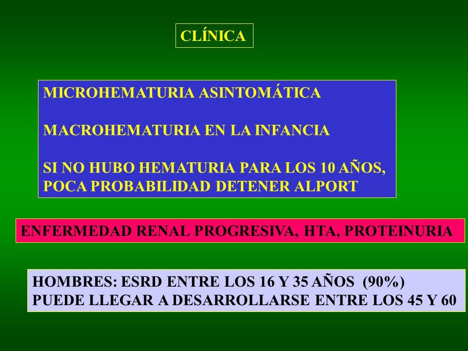 CLÍNICA MICROHEMATURIA ASINTOMÁTICA. MACROHEMATURIA EN LA INFANCIA. SI NO HUBO HEMATURIA PARA LOS 10 AÑOS,