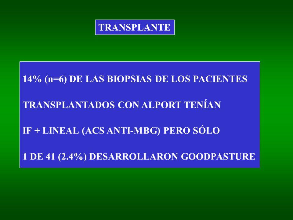 TRANSPLANTE 14% (n=6) DE LAS BIOPSIAS DE LOS PACIENTES. TRANSPLANTADOS CON ALPORT TENÍAN. IF + LINEAL (ACS ANTI-MBG) PERO SÓLO.