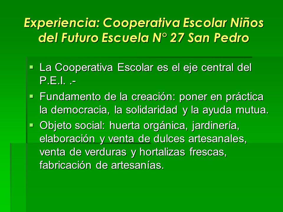 Experiencia: Cooperativa Escolar Niños del Futuro Escuela N° 27 San Pedro