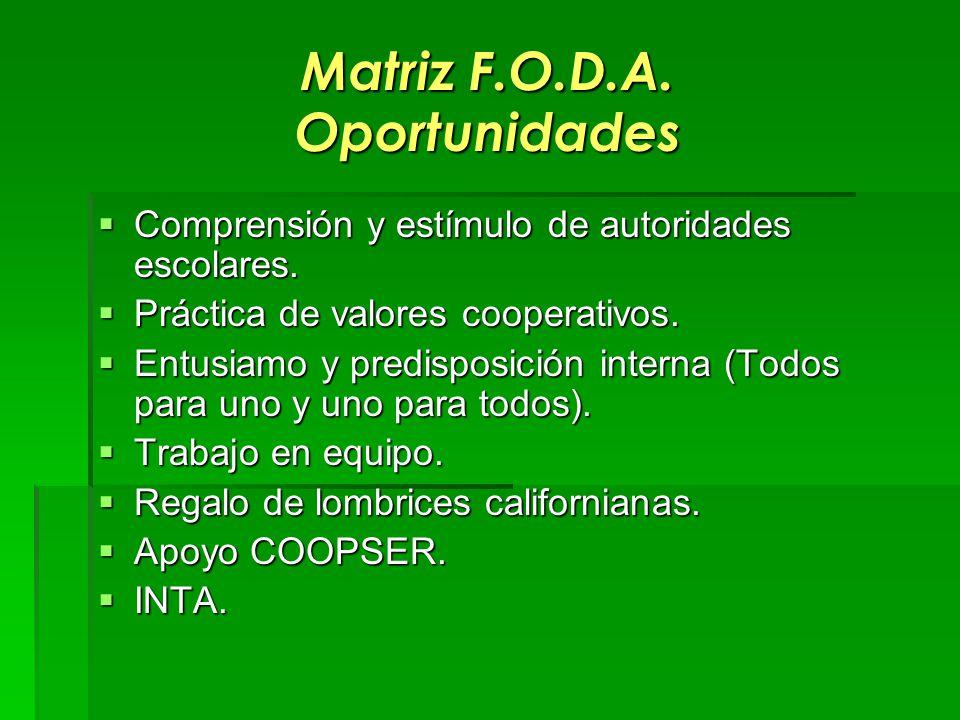 Matriz F.O.D.A. Oportunidades