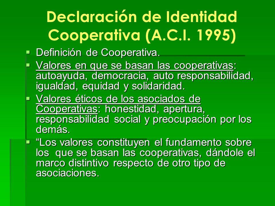 Declaración de Identidad Cooperativa (A.C.I. 1995)