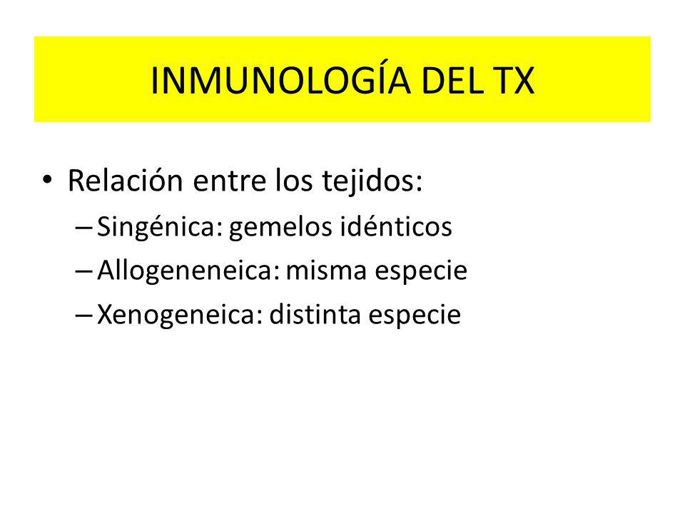 INMUNOLOGÍA DEL TX Relación entre los tejidos: