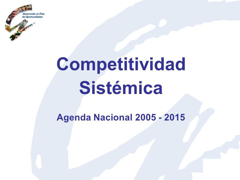 Competitividad Sistémica
