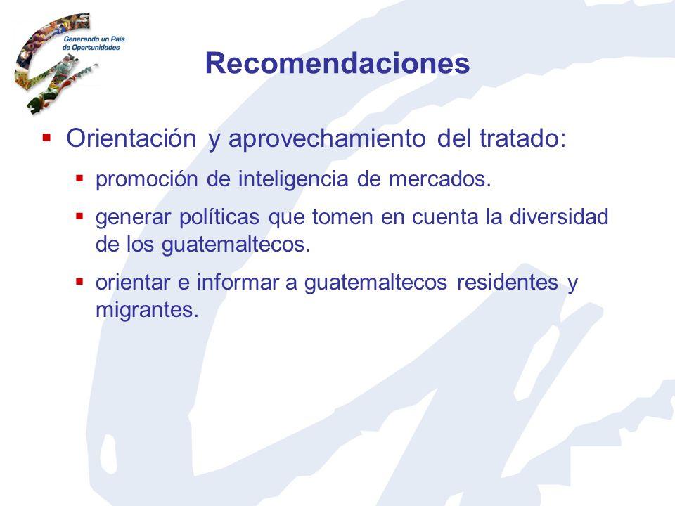 Recomendaciones Orientación y aprovechamiento del tratado: