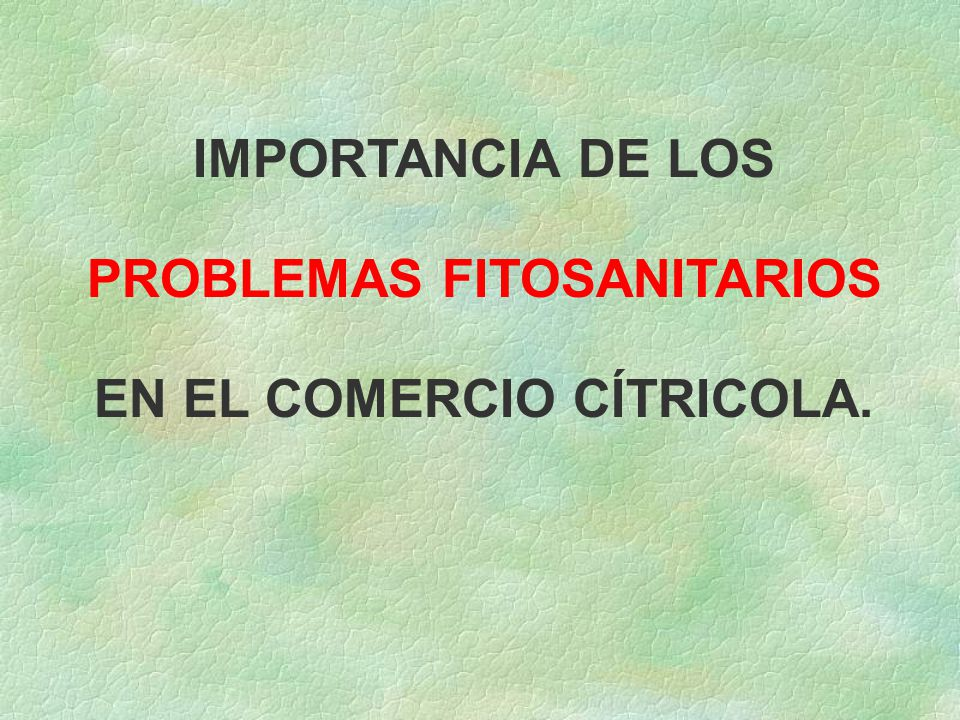 PROBLEMAS FITOSANITARIOS EN EL COMERCIO CÍTRICOLA.