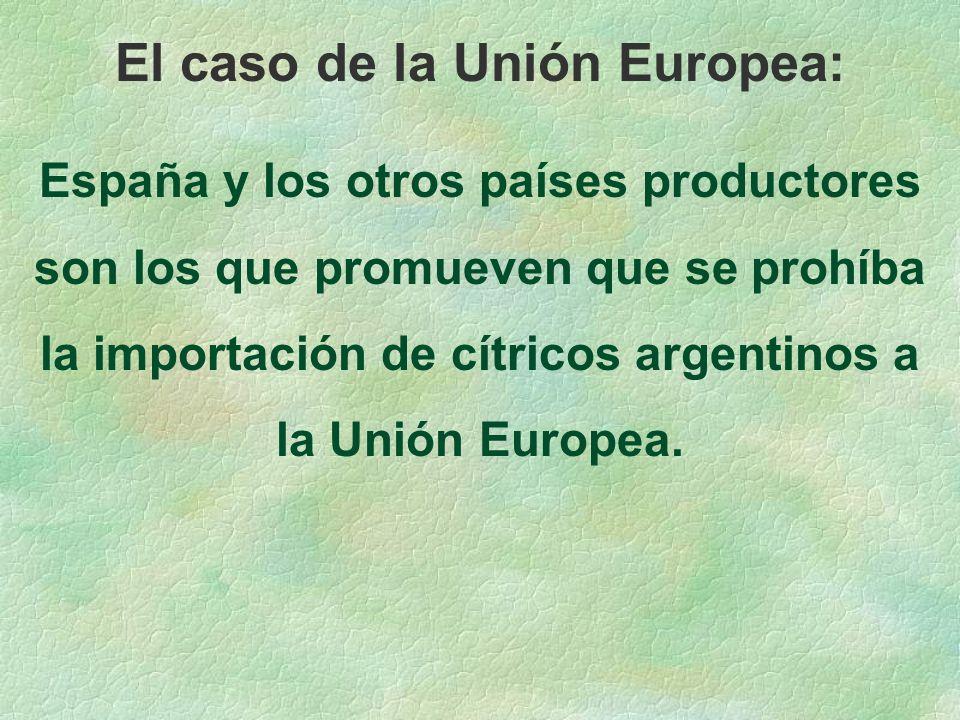El caso de la Unión Europea: