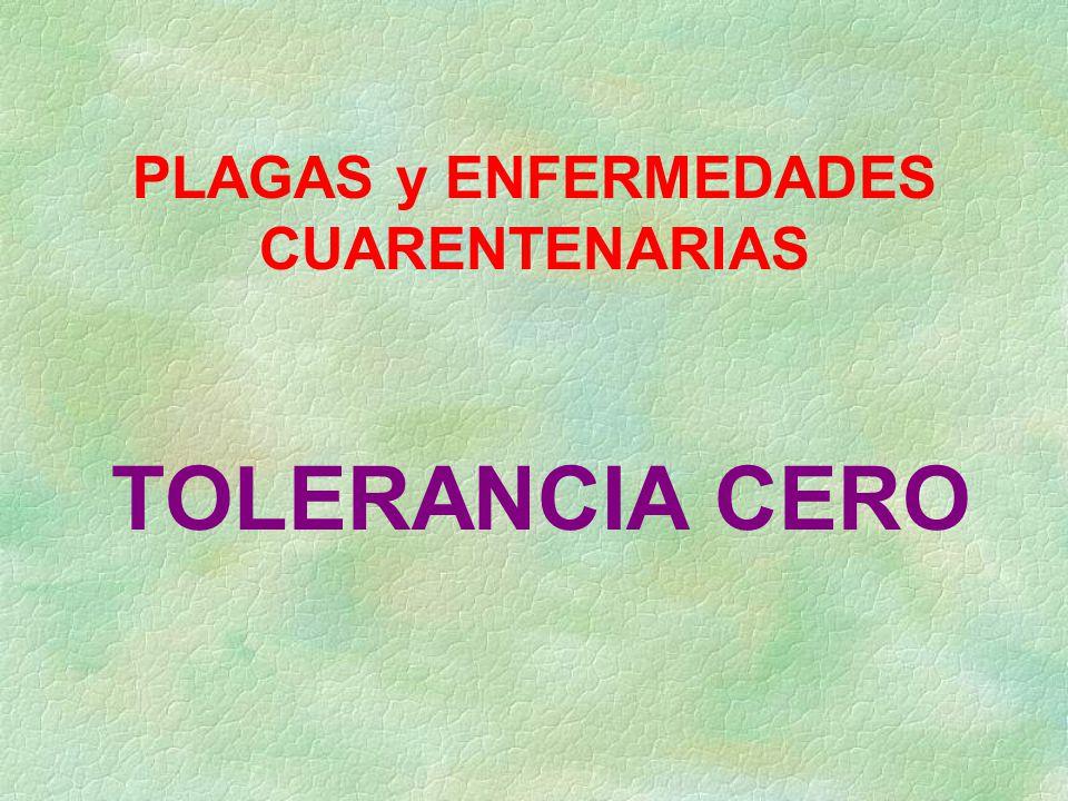 PLAGAS y ENFERMEDADES CUARENTENARIAS