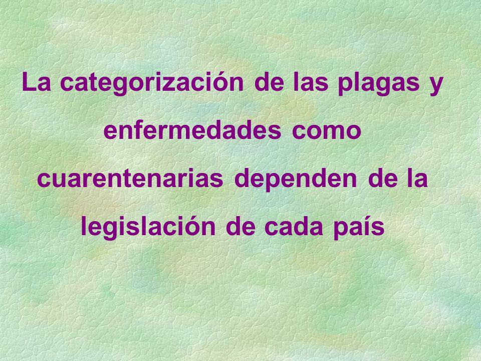 La categorización de las plagas y enfermedades como