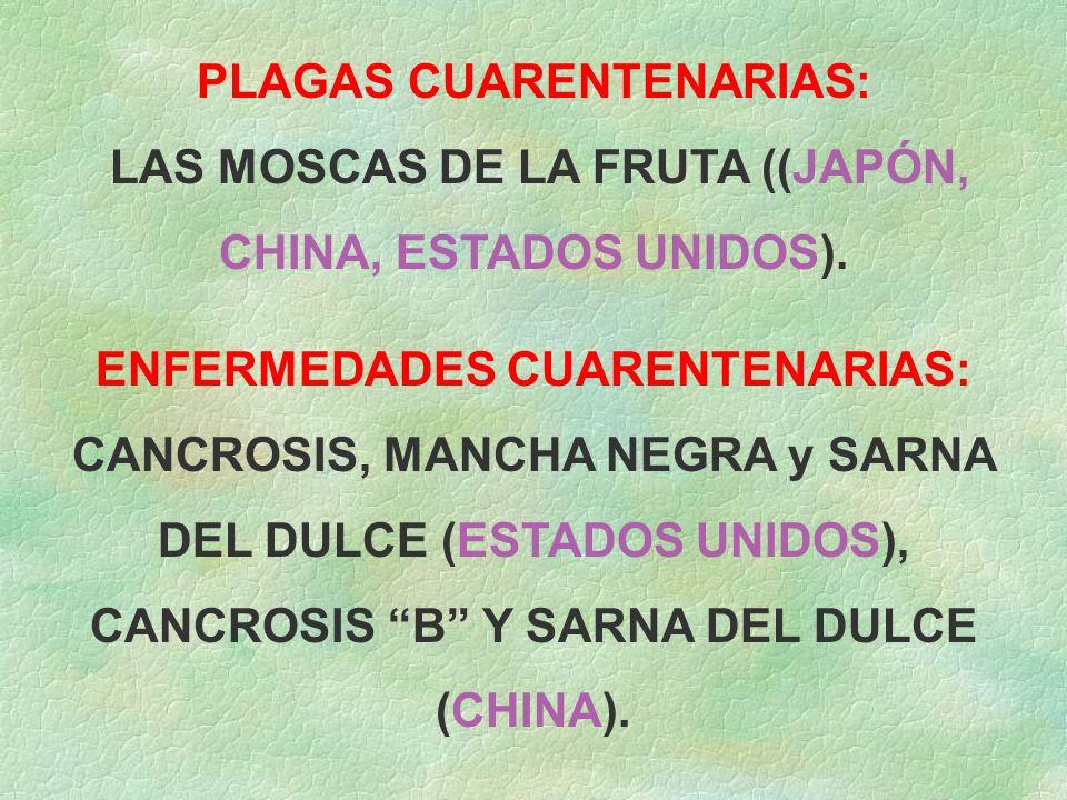 PLAGAS CUARENTENARIAS: LAS MOSCAS DE LA FRUTA ((JAPÓN,