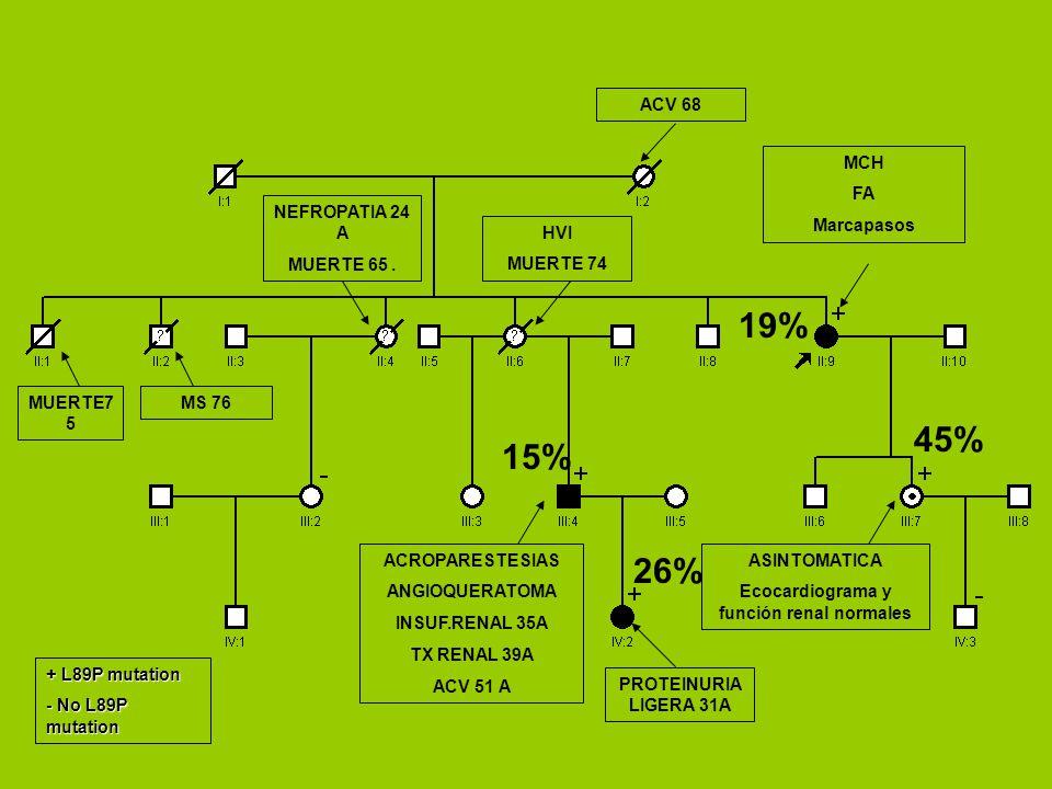 Ecocardiograma y función renal normales