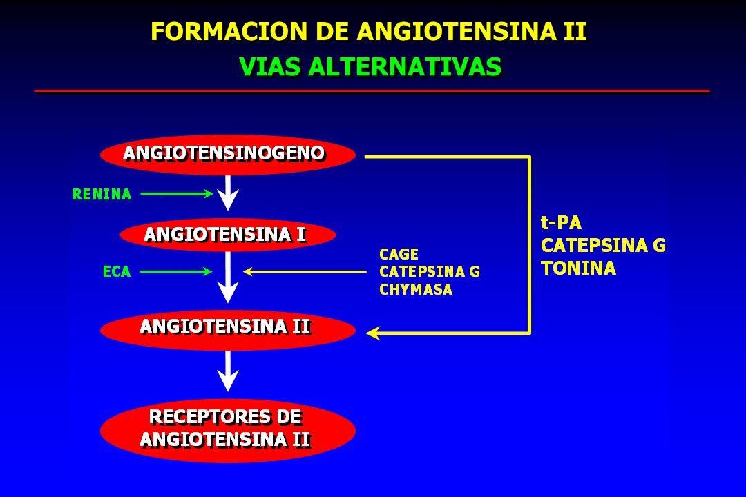 FORMACION DE ANGIOTENSINA II FORMACION DE ANGIOTENSINA II