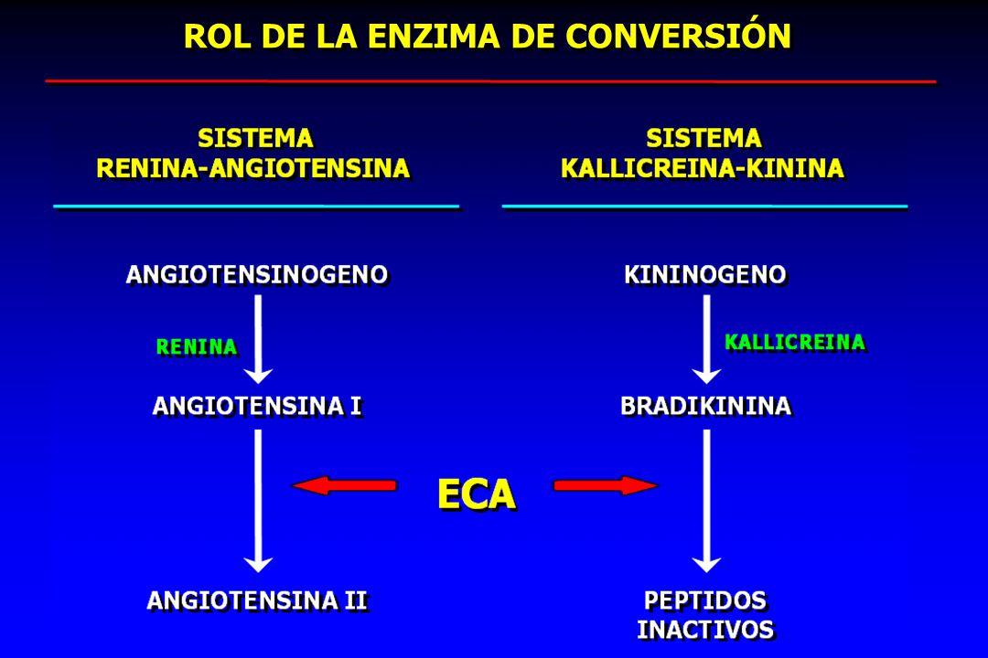 ROL DE LA ENZIMA DE CONVERSIÓN ROL DE LA ENZIMA DE CONVERSIÓN
