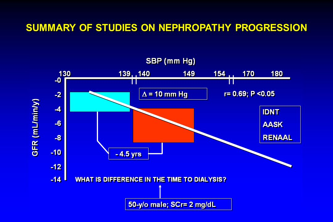 SUMMARY OF STUDIES ON NEPHROPATHY PROGRESSION