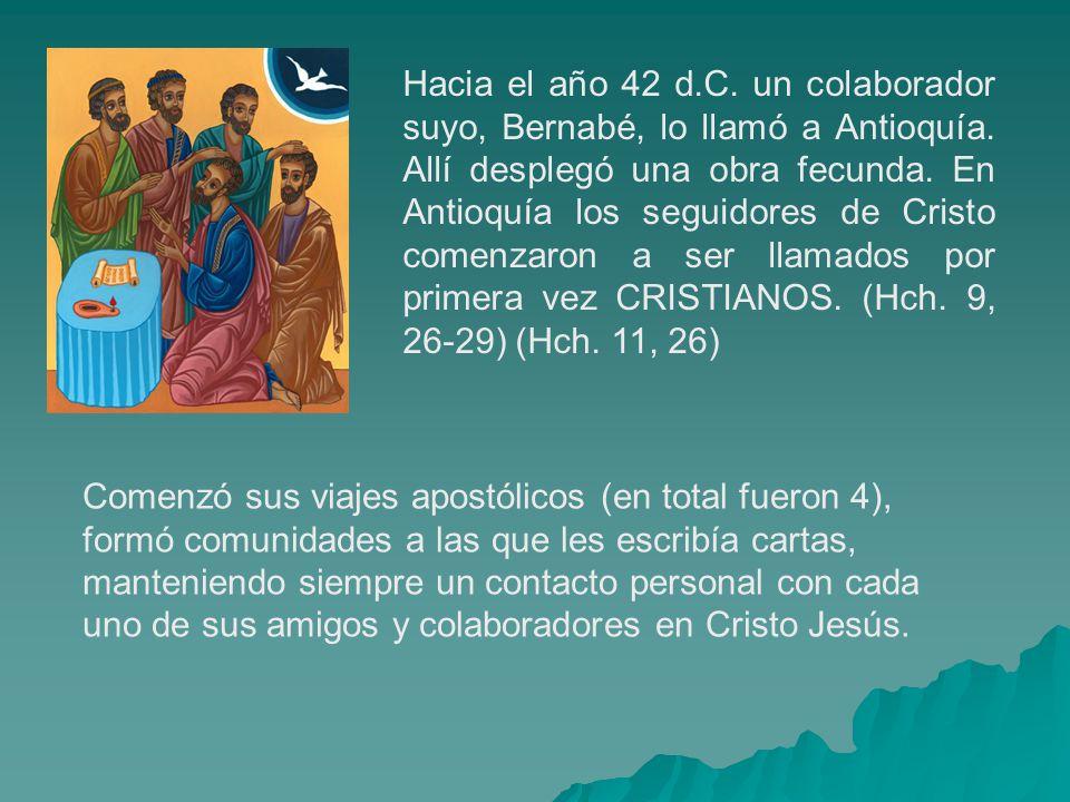 Hacia el año 42 d.C. un colaborador suyo, Bernabé, lo llamó a Antioquía. Allí desplegó una obra fecunda. En Antioquía los seguidores de Cristo comenzaron a ser llamados por primera vez CRISTIANOS. (Hch. 9, 26-29) (Hch. 11, 26)