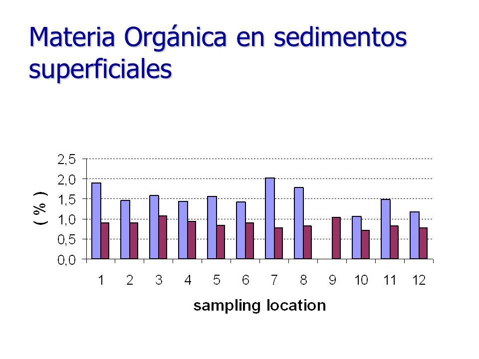 Materia Orgánica en sedimentos superficiales