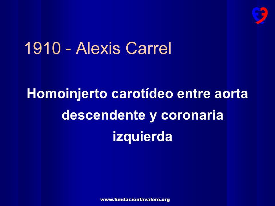 Homoinjerto carotídeo entre aorta descendente y coronaria izquierda