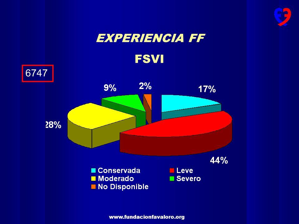 EXPERIENCIA FF FSVI 6747