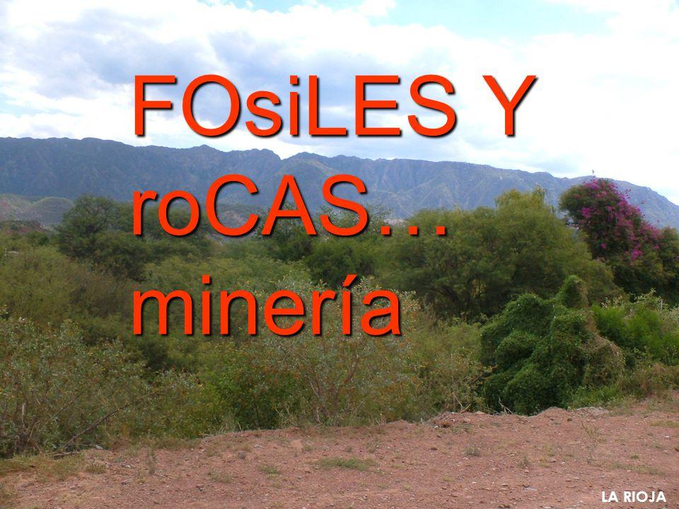 FOsiLES Y roCAS… minería