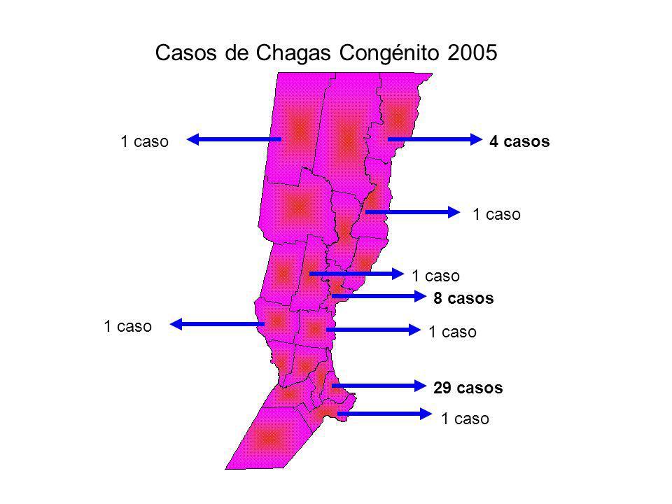 Casos de Chagas Congénito 2005