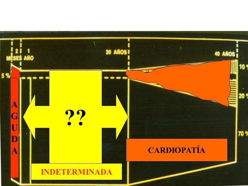 Historia Natural de la E. de Chagas A G U D CARDIOPATÍA