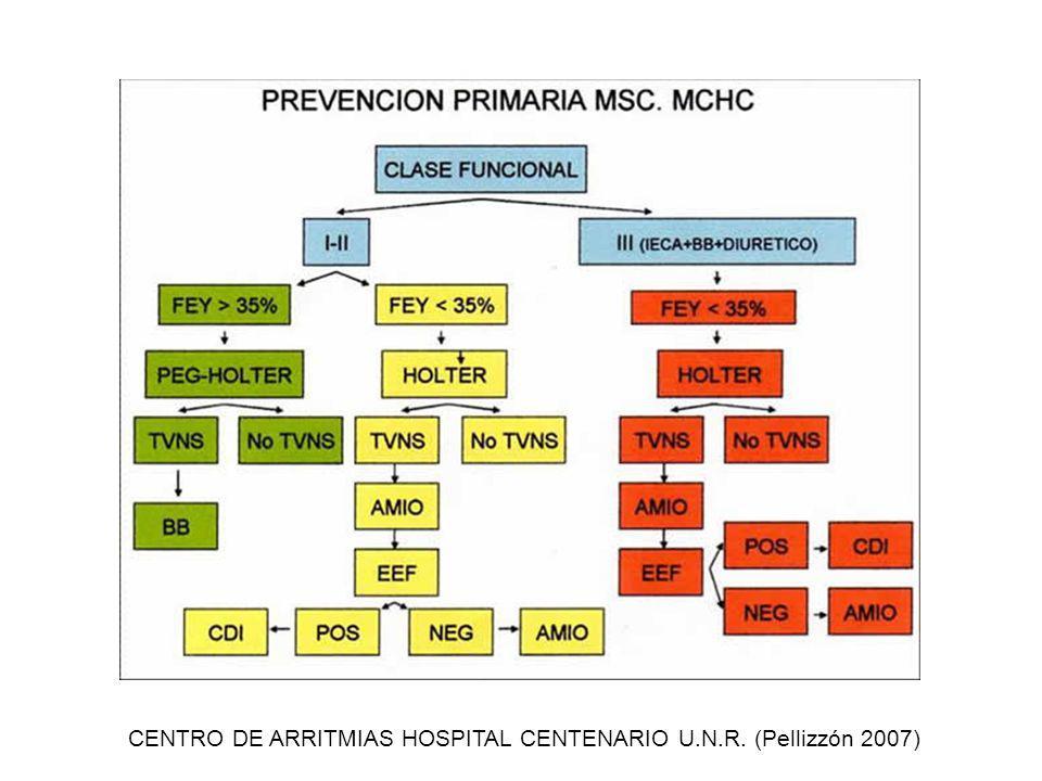 CENTRO DE ARRITMIAS HOSPITAL CENTENARIO U.N.R. (Pellizzón 2007)