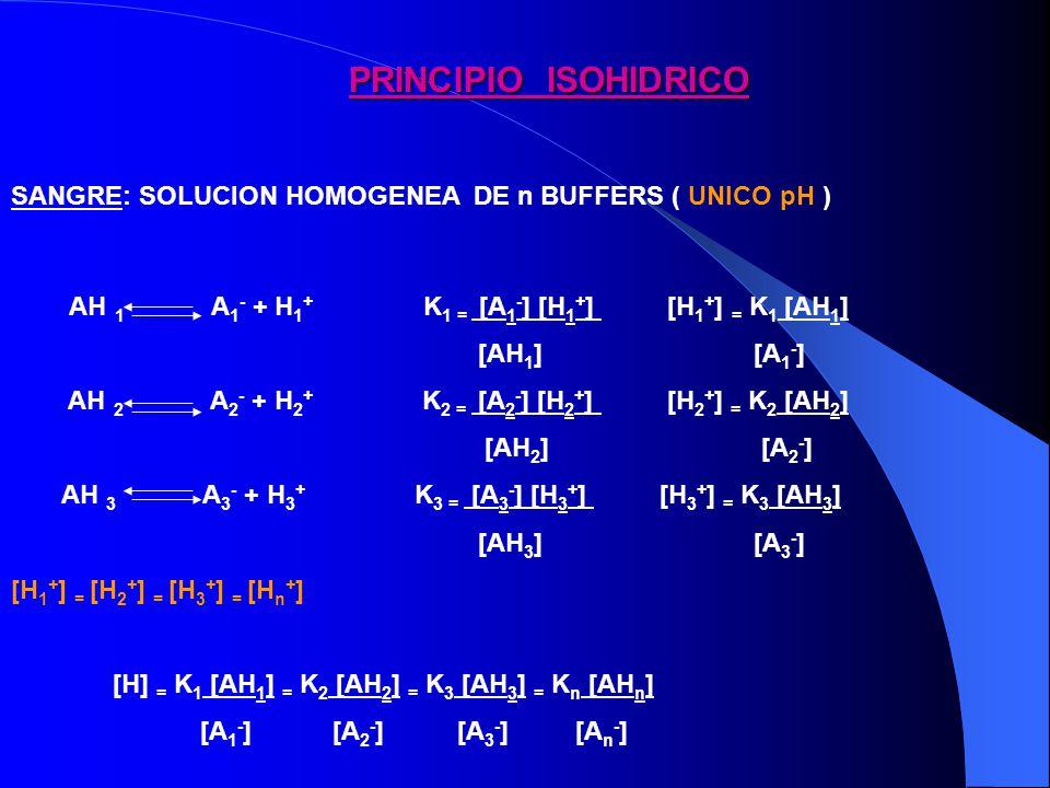 PRINCIPIO ISOHIDRICO SANGRE: SOLUCION HOMOGENEA DE n BUFFERS ( UNICO pH )