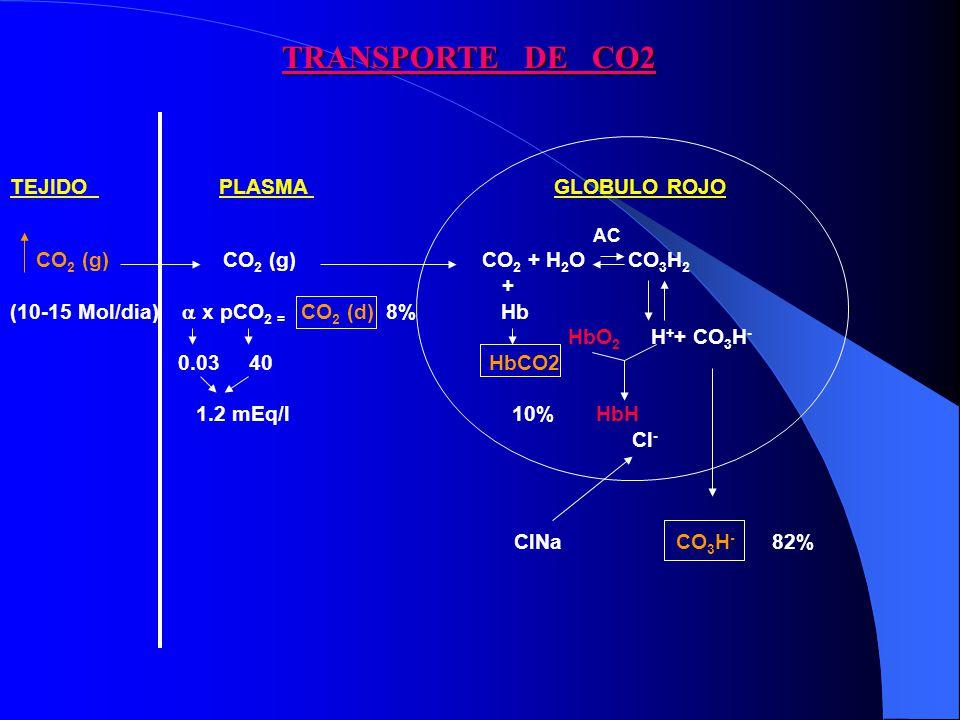 TRANSPORTE DE CO2 TEJIDO PLASMA GLOBULO ROJO +
