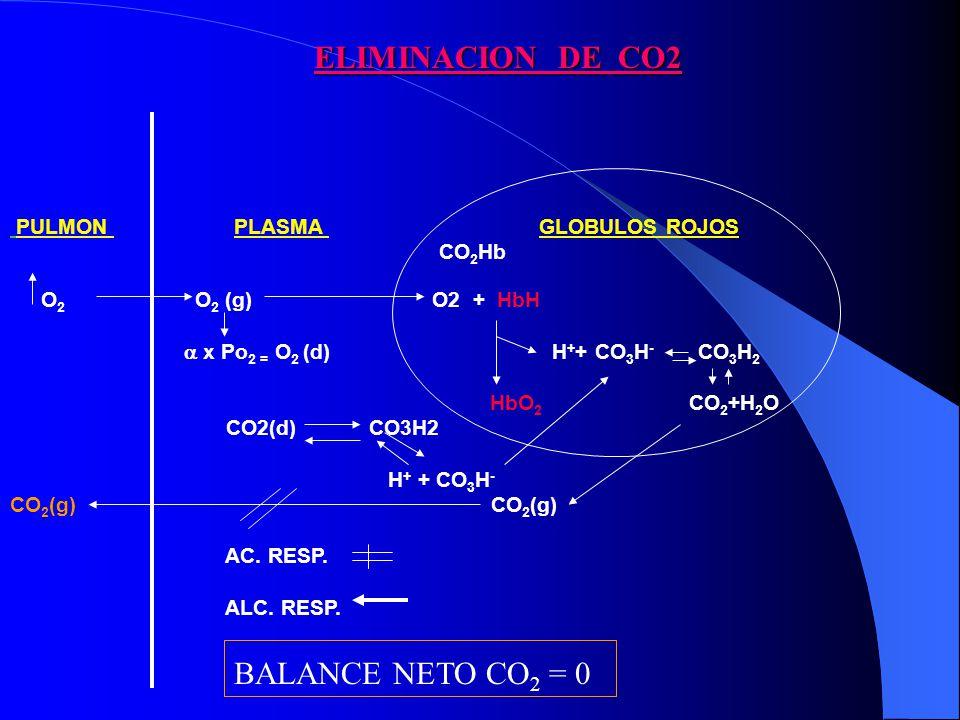 ELIMINACION DE CO2 BALANCE NETO CO2 = 0 PULMON PLASMA GLOBULOS ROJOS