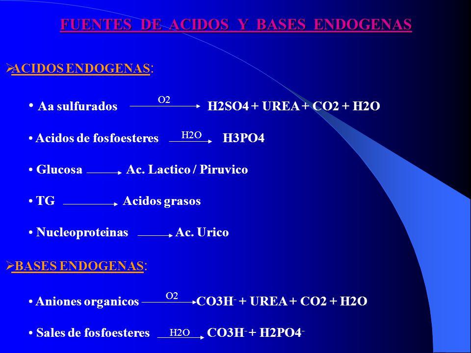 FUENTES DE ACIDOS Y BASES ENDOGENAS