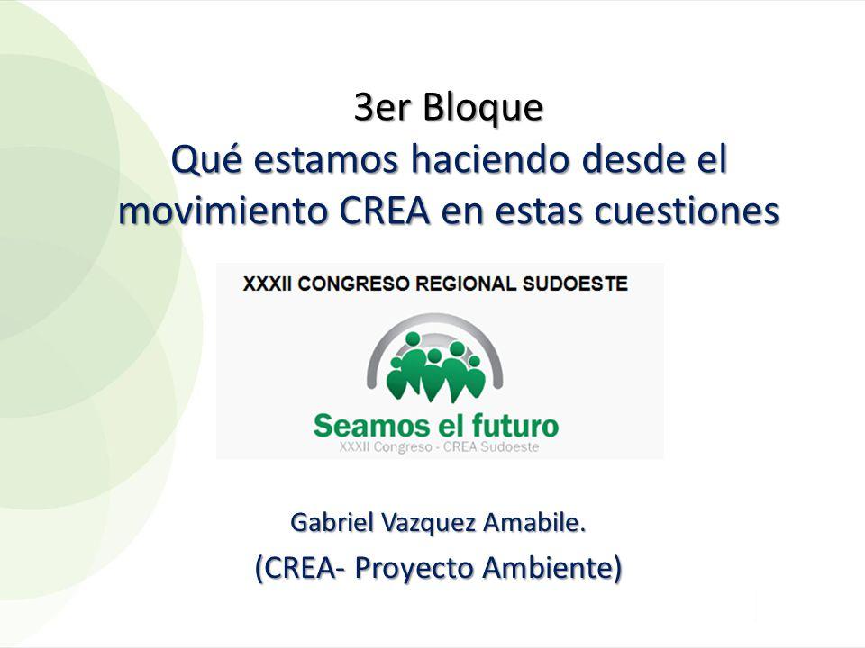 Gabriel Vazquez Amabile. (CREA- Proyecto Ambiente)