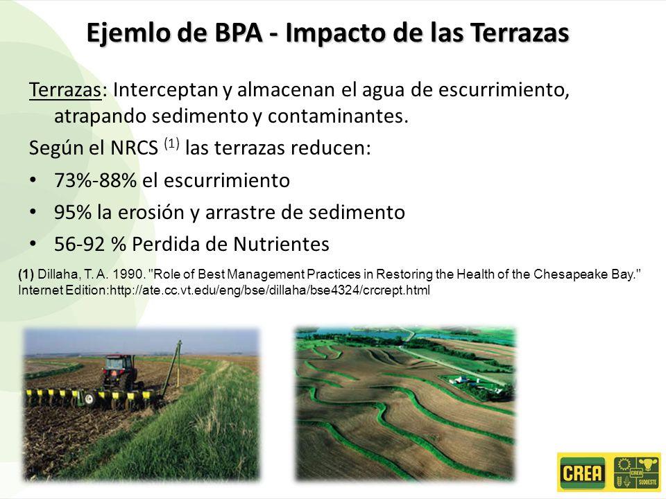 Ejemlo de BPA - Impacto de las Terrazas