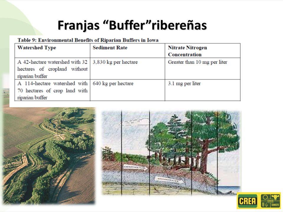 Franjas Buffer ribereñas