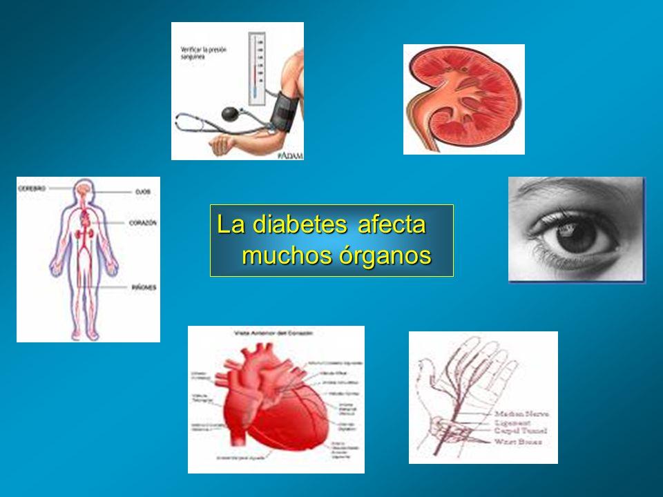 La diabetes afecta muchos órganos