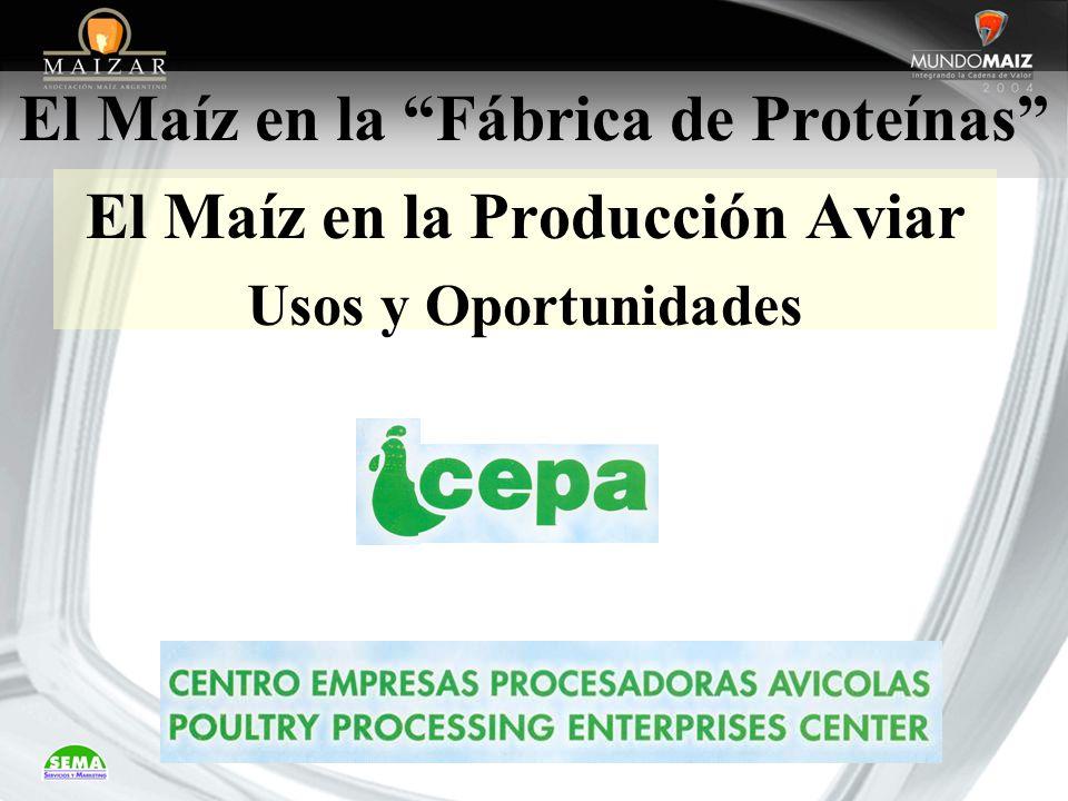 El Maíz en la Fábrica de Proteínas