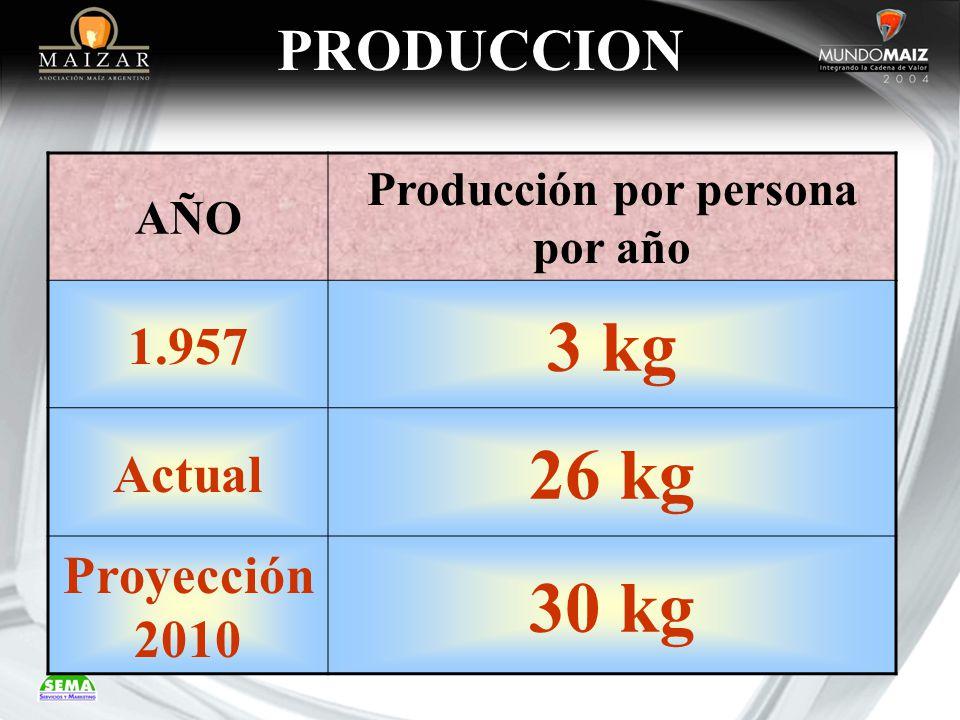 Producción por persona por año