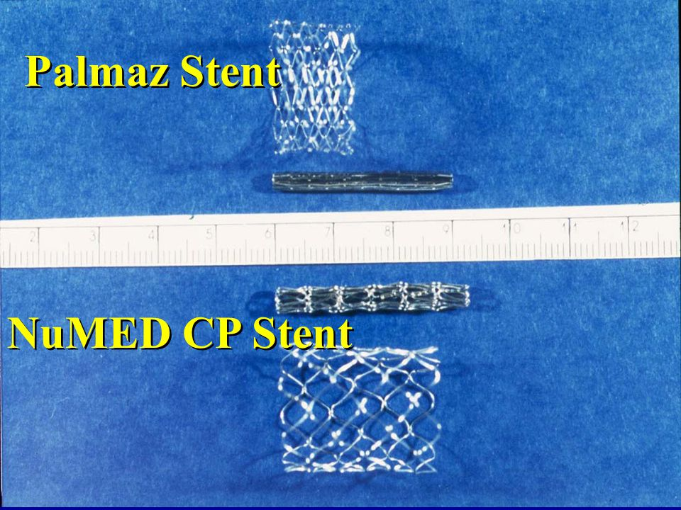 Palmaz Stent NuMED CP Stent