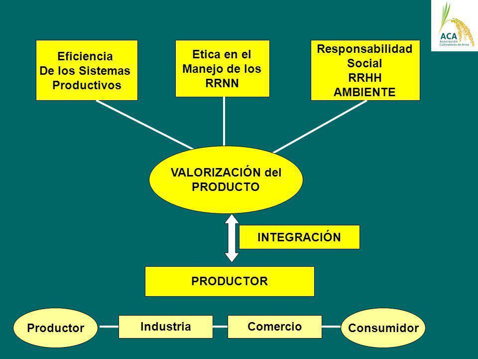 Eficiencia De los Sistemas. Productivos. Etica en el. Manejo de los. RRNN. Responsabilidad. Social.