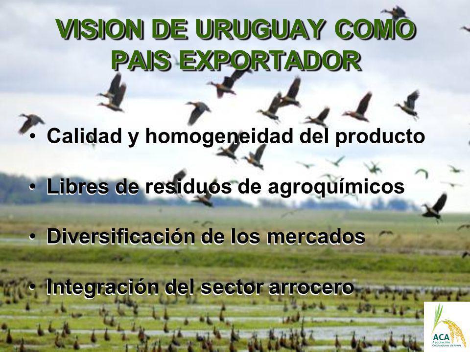 VISION DE URUGUAY COMO PAIS EXPORTADOR
