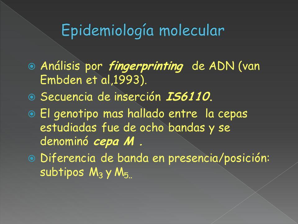 Epidemiología molecular