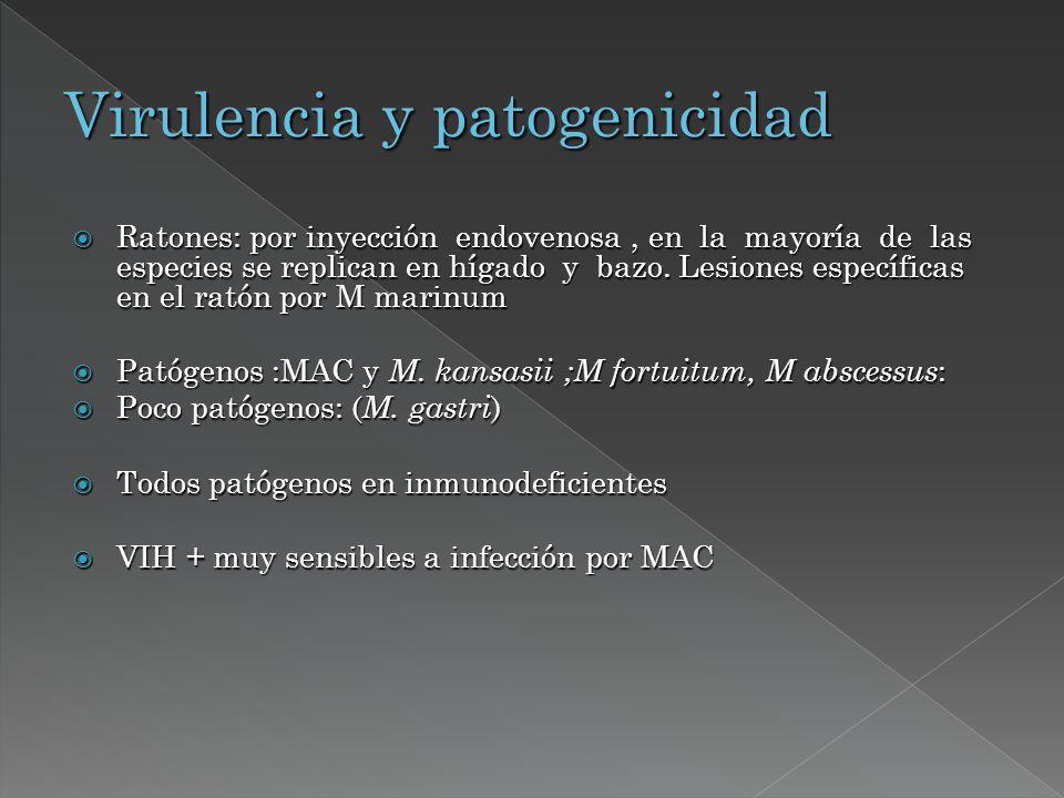 Virulencia y patogenicidad