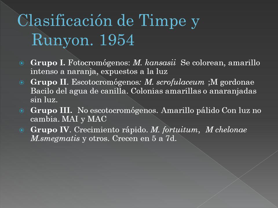 Clasificación de Timpe y Runyon. 1954