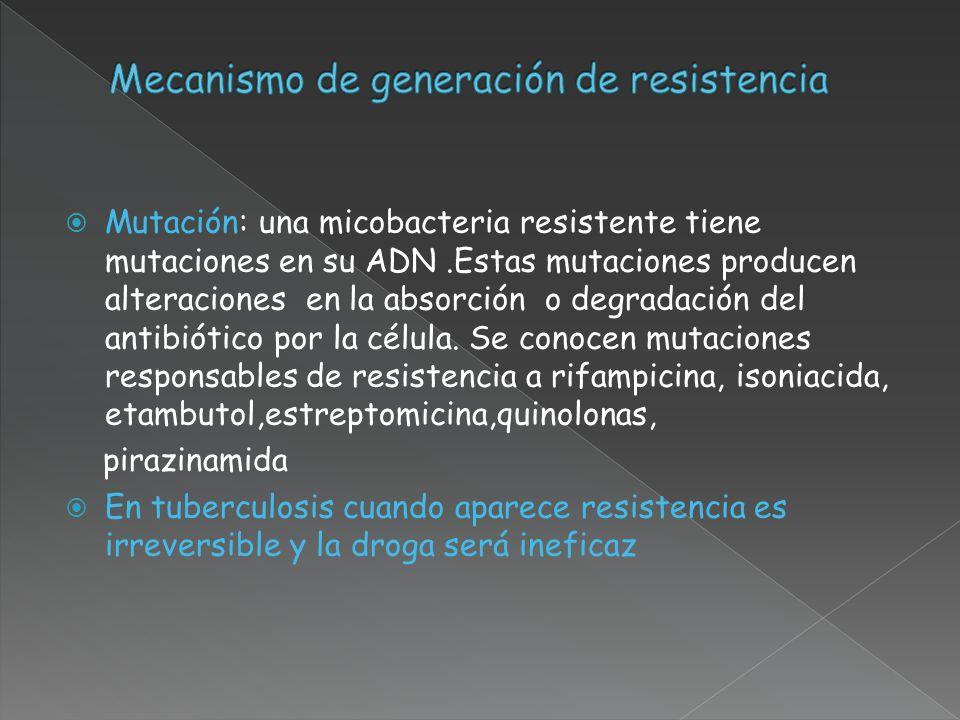 Mecanismo de generación de resistencia