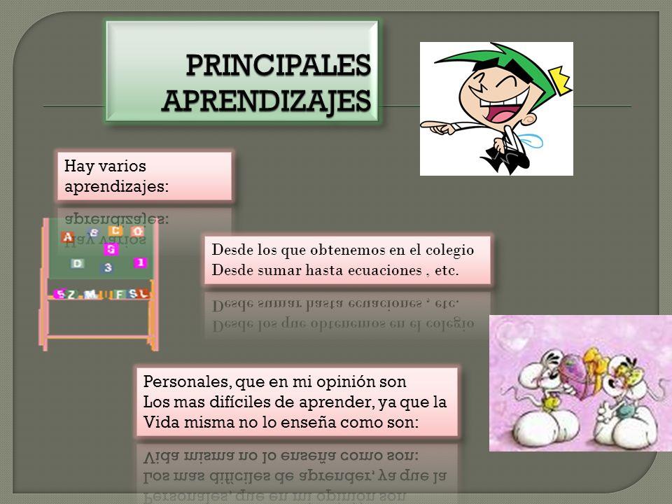 PRINCIPALES APRENDIZAJES